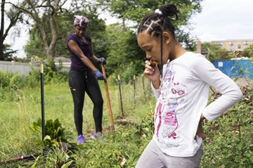 Catalyzing Change Through Empty Lots on Chicago's South Side